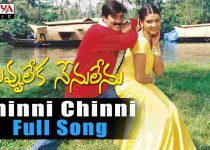 Chinni Chinni Puvvulu Song Lyrics