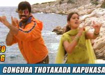 Gongoora Thotakada Song Lyrics