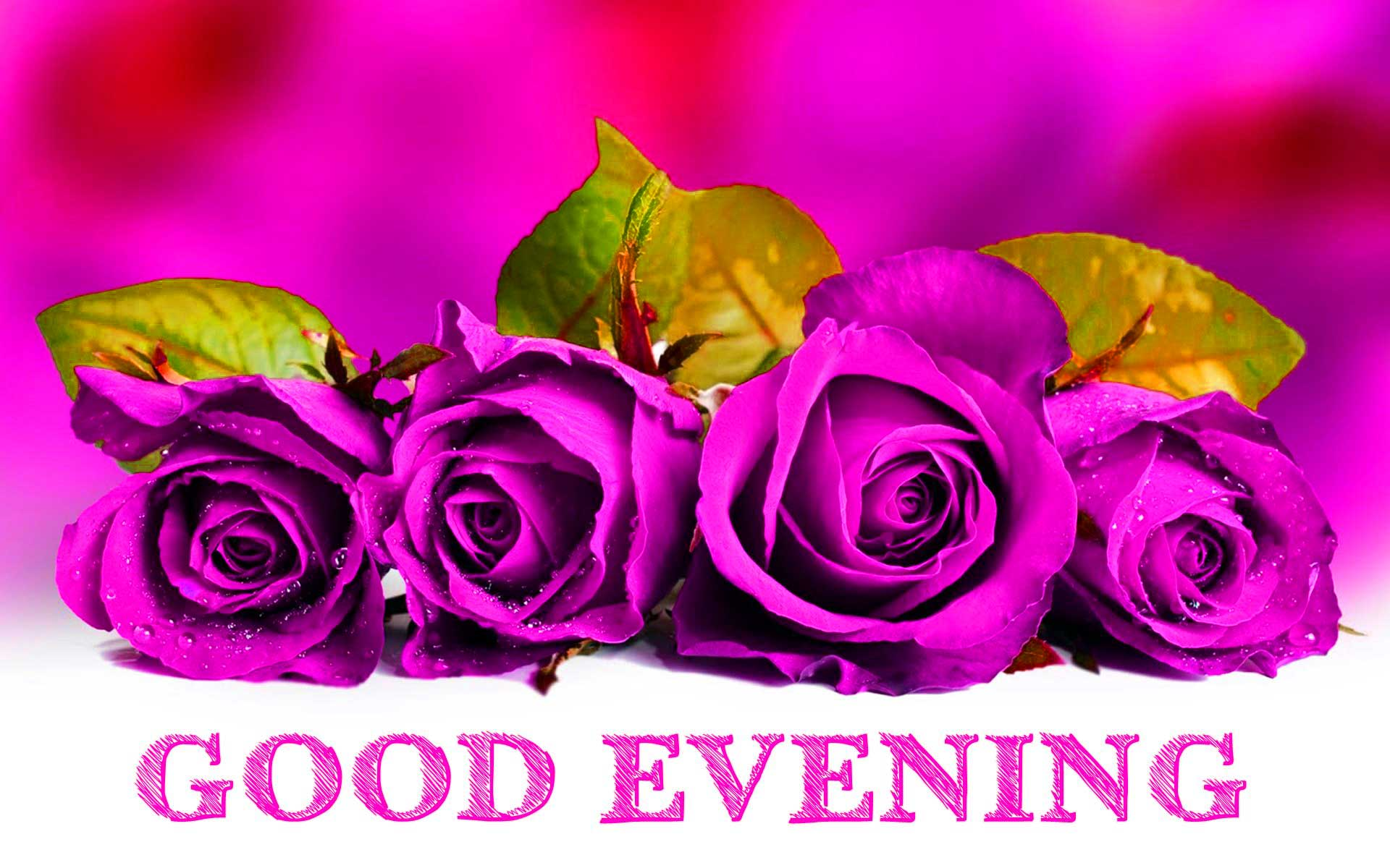 Good Evening Images With Flower